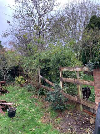 collapsed garden fence